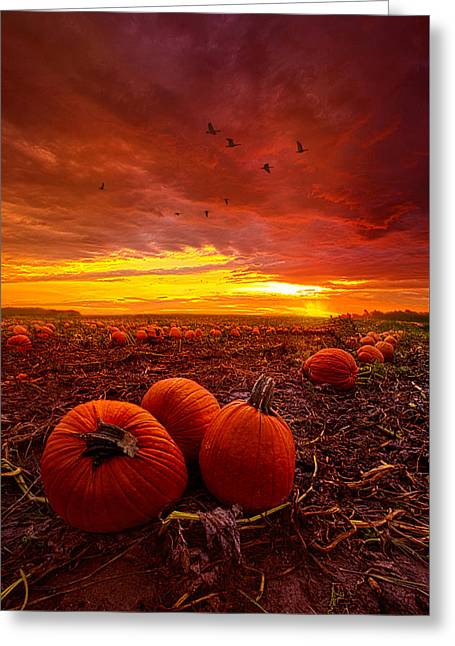 Autumn Falls Greeting Card by Phil Koch