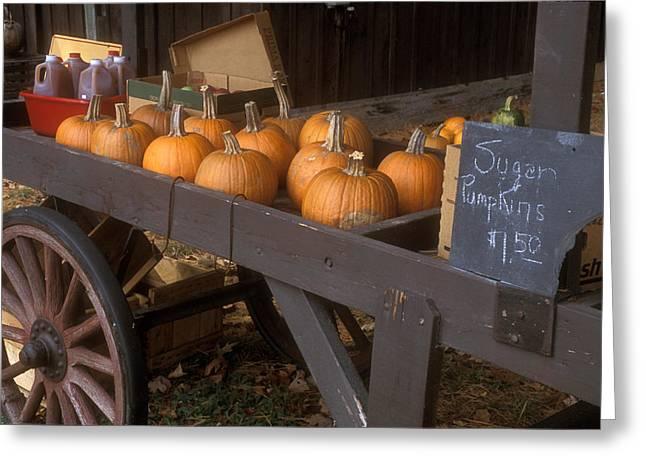 Autumn Farmstand Greeting Card by John Burk