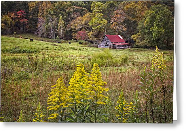 Autumn Fields Greeting Card by Debra and Dave Vanderlaan