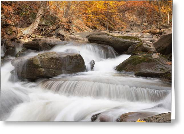 Autumn Fire Square Greeting Card by Bill Wakeley