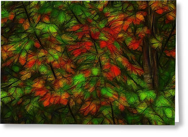Photo Art Gallery Greeting Cards - Autumn Foliage Greeting Card by Jean-Marc Lacombe