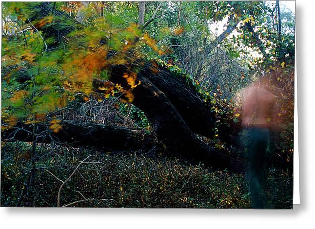 Self-portrait Photographs Greeting Cards - Autumn Ghost Greeting Card by Tim Nichols