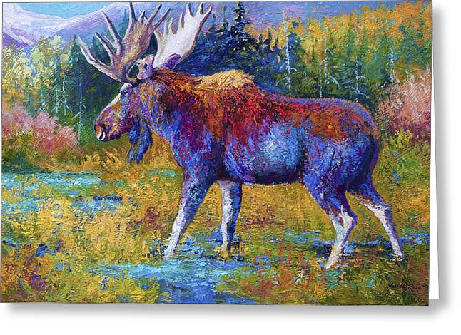 Moose Bull Greeting Cards - Autumn Glimpse Greeting Card by Marion Rose