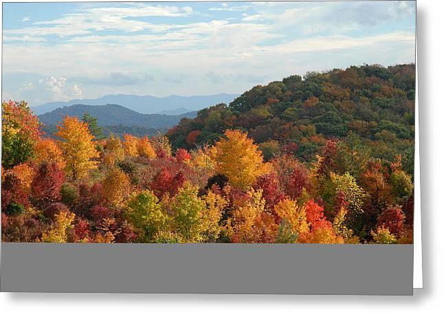 Autumn Glory Greeting Card by Alan Lenk
