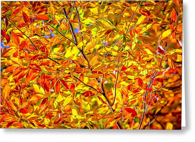 Sheds Greeting Cards - Autumn Gold and Red - Painted Greeting Card by Black Brook Photography