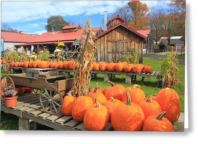 Autumn Harvest Pumpkins And Sugar House Greeting Card by John Burk