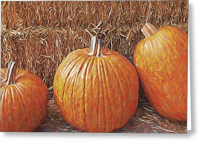 Harvest Time Greeting Cards - Autumn Harvest Greeting Card by Steve Ohlsen
