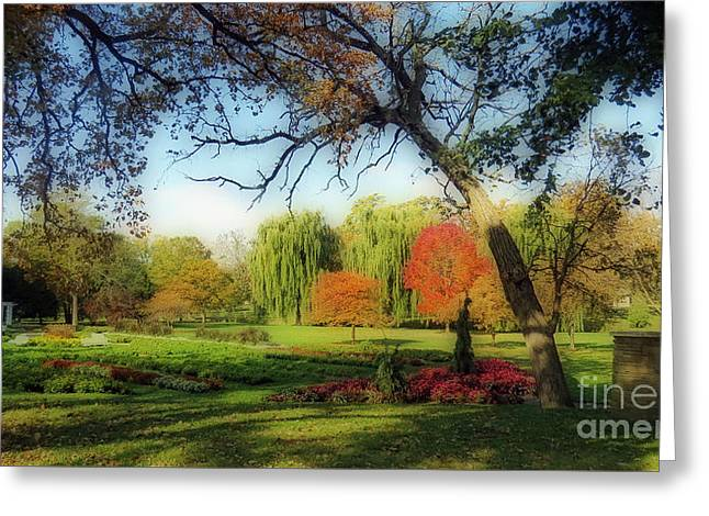 Garden Scene Greeting Cards - Autumn In A Beautiful Park Greeting Card by Kay Novy