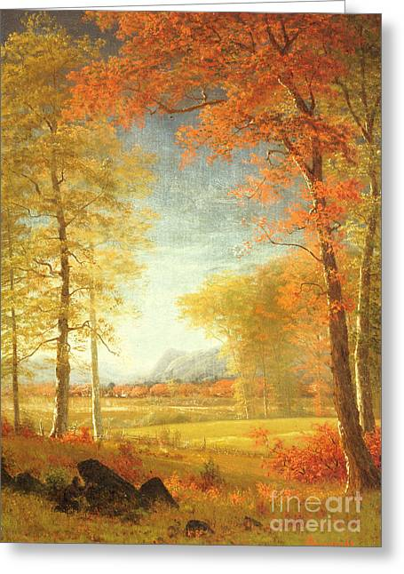 Rural Schools Greeting Cards - Autumn in America Greeting Card by Albert Bierstadt