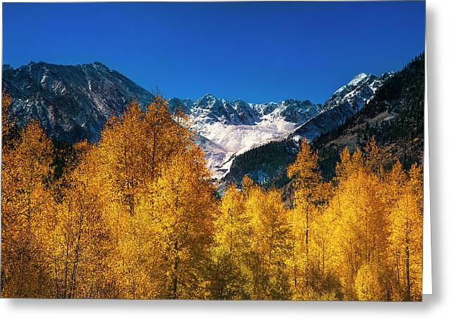 Autumn In Colorado Greeting Card by Andrew Soundarajan