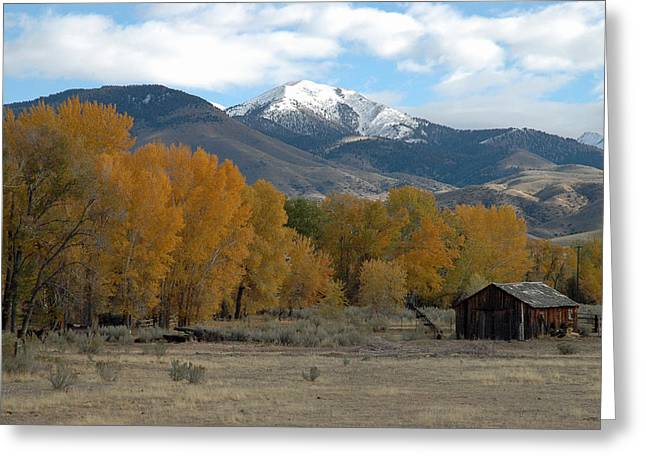 Out-building Greeting Cards - Autumn in Montanas Madison Valley Greeting Card by Bruce Gourley