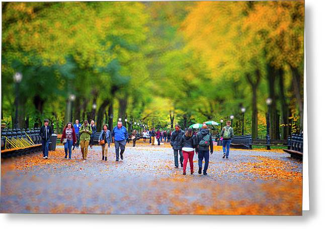 Autumn In New York Greeting Card by Mark Andrew Thomas