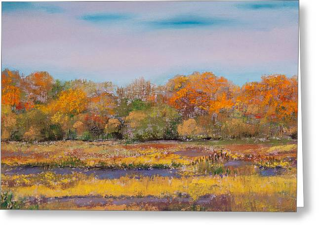 Fall Colors Pastels Greeting Cards - Autumn in the Adirondack Mountains Greeting Card by David Patterson