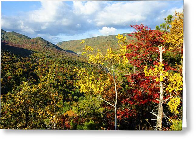 Mountain Valley Greeting Cards - Autumn in the Adirondacks 2 Greeting Card by Tony Beaver
