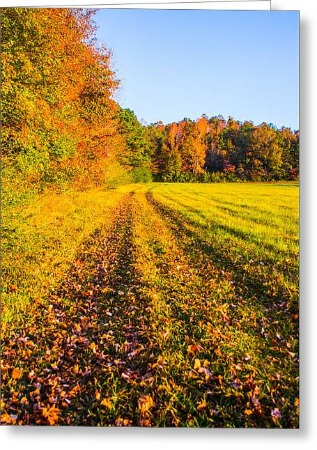 Grassy Field Greeting Cards - Autumn in the Fields Greeting Card by Parker Cunningham