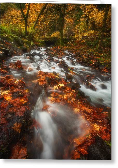 Spice Greeting Cards - Autumn in the Gorge Greeting Card by Darren  White