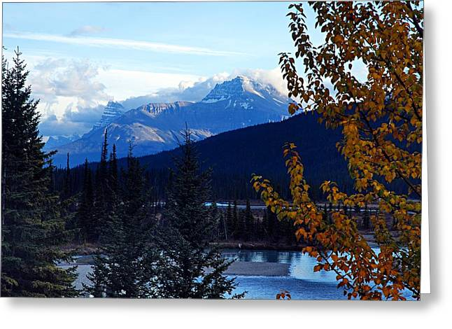 Alberta Water Falls Greeting Cards - Autumn in the Mountains Greeting Card by Larry Ricker