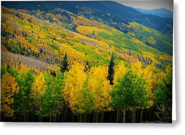 Autumn In The Rockies Greeting Card by Aaron Burrows