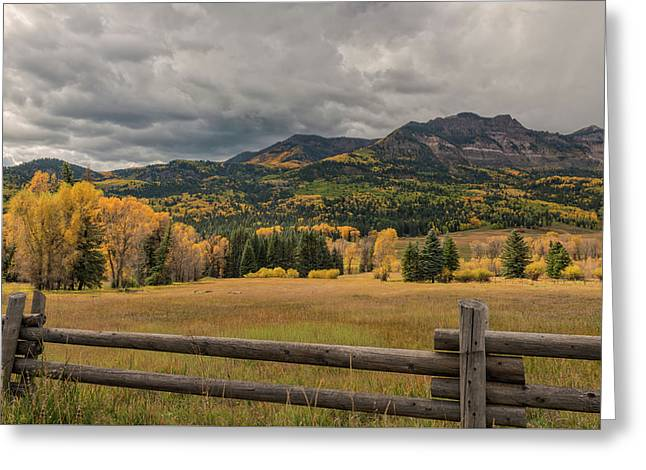 Autumn In The San Juan River Valley Greeting Card by Loree Johnson