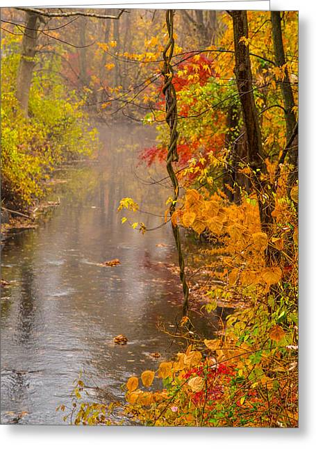 Reflecting Water Greeting Cards - Autumn In Trumbull Greeting Card by Karol  Livote