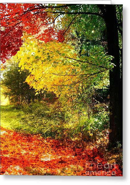 Peeping Greeting Cards - Autumn in Vermont Greeting Card by Mindy Sommers
