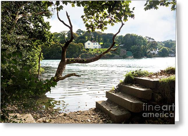 Autumn Is Coming To Mylor Bridge Greeting Card by Terri Waters