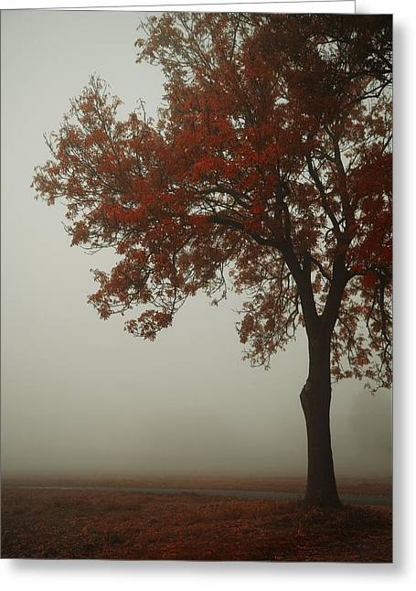 Autumn Greeting Card by Art of Invi