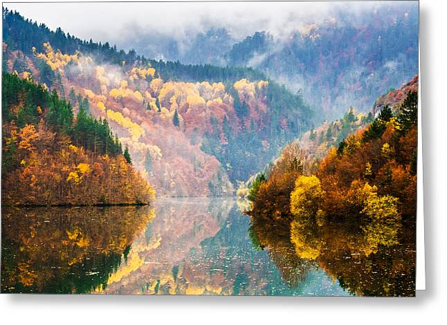 Fog Mist Greeting Cards - Autumn Lake Greeting Card by Evgeni Dinev