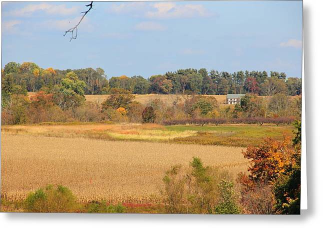 New Jersey Greeting Cards - Autumn landscape #2 Greeting Card by Joe Valencia