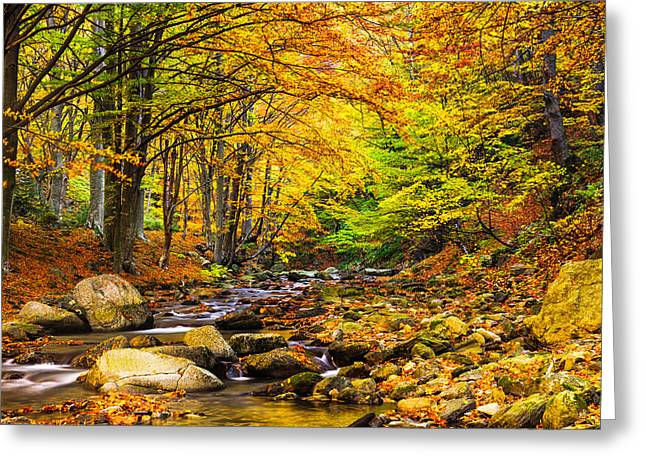 Picturesque Greeting Cards - Autumn Landscape Greeting Card by Evgeni Dinev