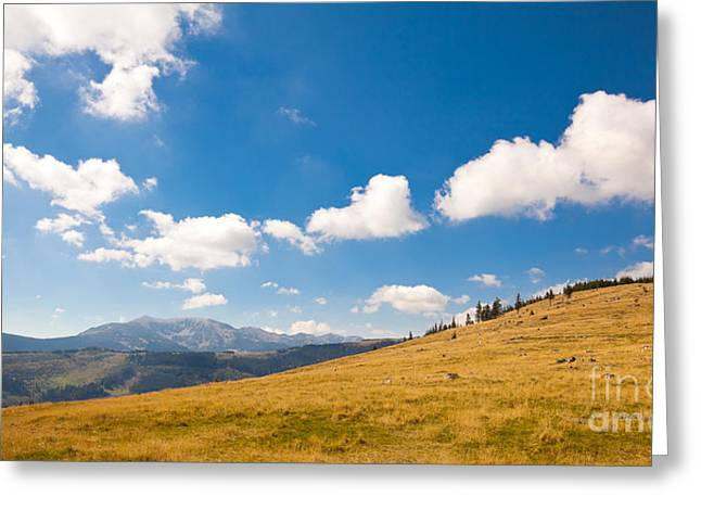 Carpathian Mountains Greeting Cards - Autumn landscape in Retezat Greeting Card by Gabriela Insuratelu