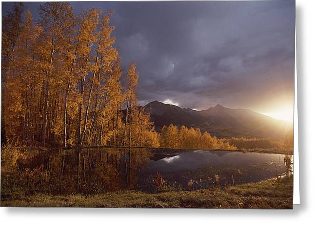Solar Phenomena Greeting Cards - Autumn Landscape Near Telluride Greeting Card by Annie Griffiths