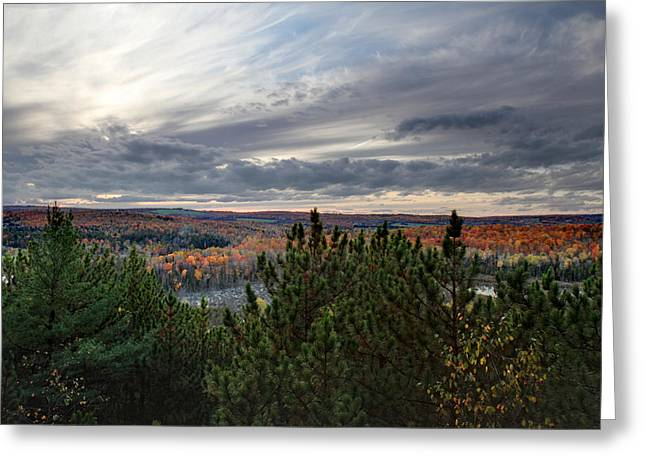 Tress Greeting Cards - Autumn Landscape Greeting Card by Pierre Leclerc Photography
