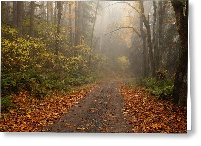 Autumn Lane Greeting Card by Mike  Dawson