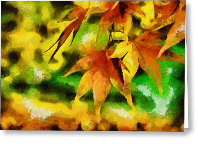 Shades Of Red Greeting Cards - Autumn Leaves Greeting Card by Labron Jacobs