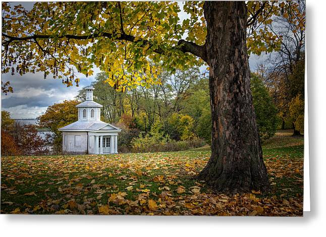 Dundurn Castle Greeting Cards - Autumn Leaves  Greeting Card by Rick McKenzie