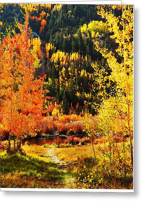 Autumn Photographs Mixed Media Greeting Cards - Autumn Leaves Greeting Card by Terril Heilman