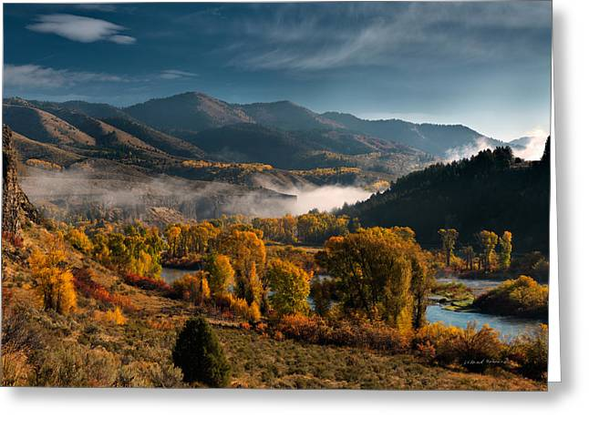 Fall Trees Greeting Cards - Autumn Light along the Snake River Greeting Card by Leland D Howard