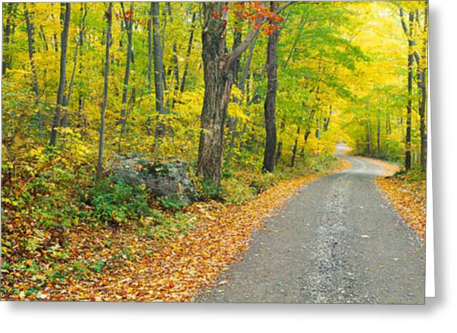 Colors Of Autumn Greeting Cards - Autumn, Macedonia Brook State Park Greeting Card by Panoramic Images