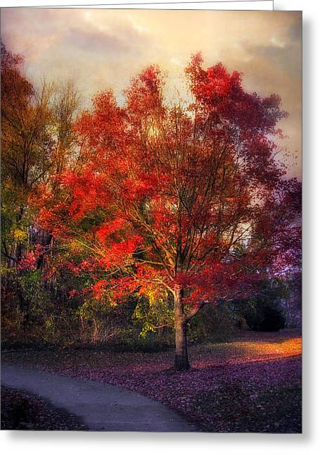 Autumn Maple Greeting Card by Jessica Jenney