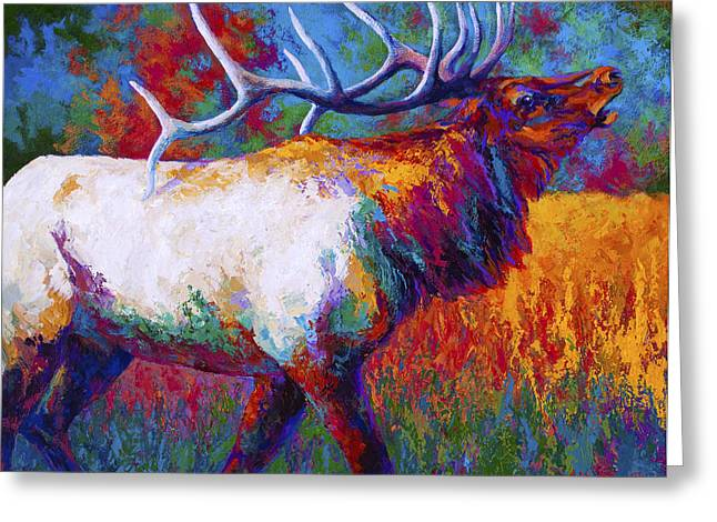 Elk Wildlife Greeting Cards - Autumn Greeting Card by Marion Rose