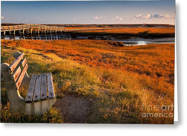 Colors Of Autumn Greeting Cards - Autumn Marshland Greeting Card by Susan Cole Kelly