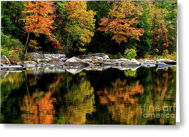 Autumn Middlle Fork River Greeting Card by Thomas R Fletcher