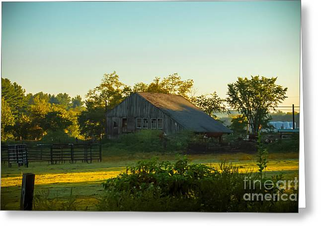 Nature Scene Greeting Cards - Autumn morning at the farm Greeting Card by Claudia Mottram
