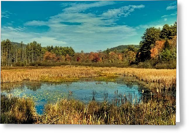 Fall Colors Greeting Cards - Autumn Near Lake George Greeting Card by David Patterson
