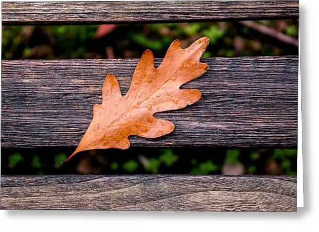 Autumn Oakleaf On Bench Greeting Card by Tom Mc Nemar