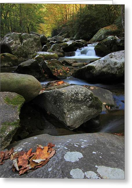Gatlinburg Tennessee Greeting Cards - Autumn On Little River In The Smoky Mountains Greeting Card by Dan Sproul