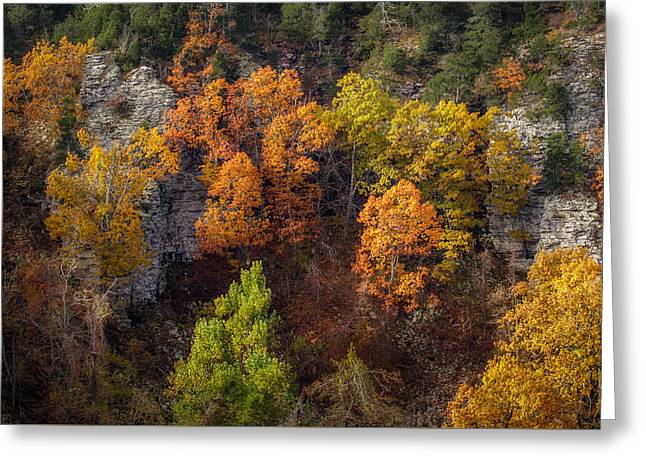 Mt Magazine Greeting Cards - Autumn on Mount Magazine Greeting Card by James Barber
