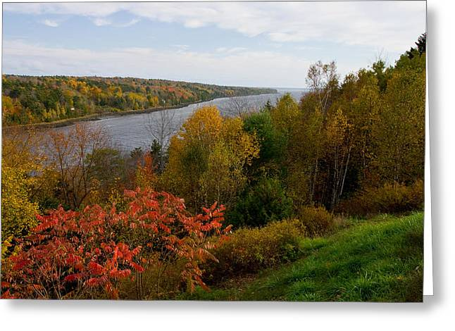 Brent L Ander Greeting Cards - Autumn on the Penobscot Greeting Card by Brent L Ander