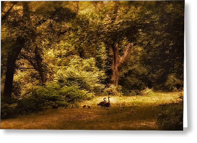 Autumn Landscape Photographs Greeting Cards - Autumn Outing Greeting Card by Jessica Jenney